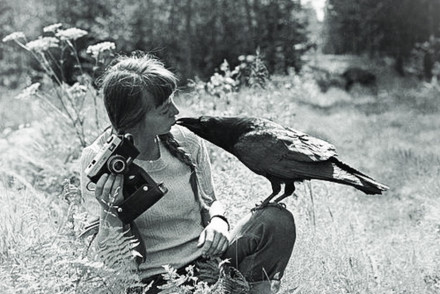 Simona Kossak i kruk. Fot. Lech Wilczek